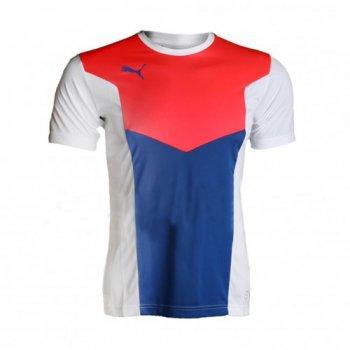 PUMA ftblTRG Shirt BLU/PNK/WHT 655207-54