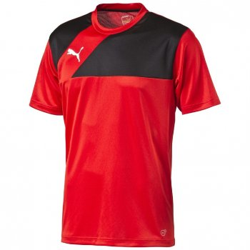 Puma Esquadra Training Jersey 654379