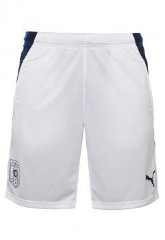 Puma FIGC Italia Training Shorts 742555-02