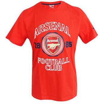 Puma Arsenal 14/15 Graphic Tee 746945-01