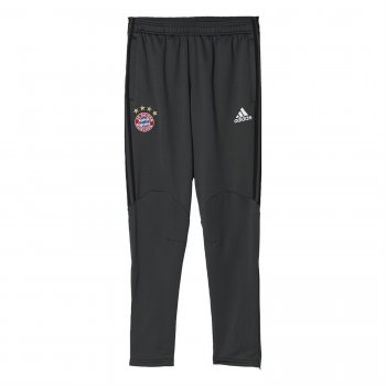Adidas FC Bayern 16/17 Pre Pants GRY AP7906