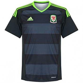 Adidas National Team Euro 2016 Wales (A) S/S AI6632
