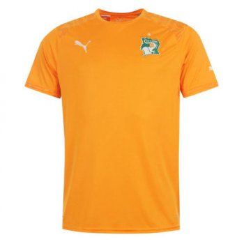 Puma National Team 2014 World Cup Ivory Coast (H) 744586-01