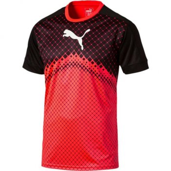 Puma IT evoTRG Graphic Tee RD/BLK 654902-55