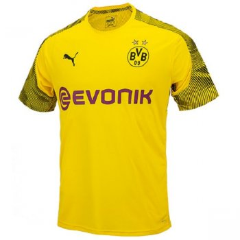 Puma BVB 19/20 Training Jersey 755762 01